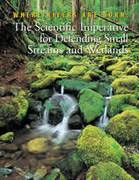 Where Rivers Are Born: The Scientific Imperative for Defending Small Streams and Wetlands