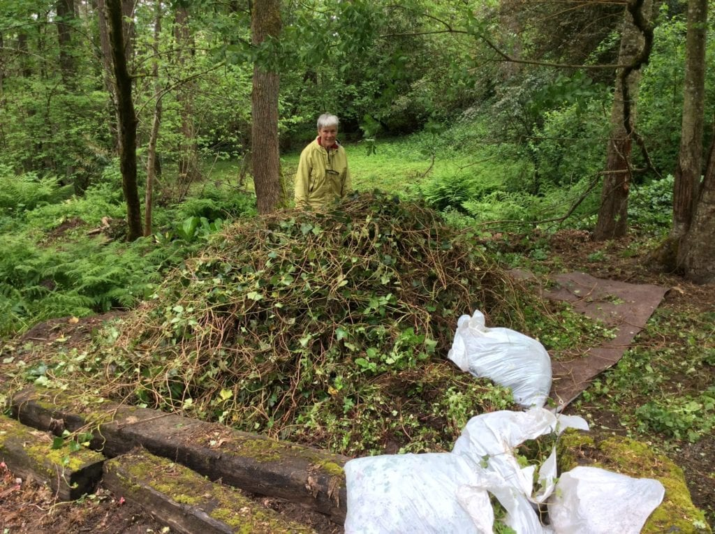 Stephanie, with the huge mound pulled invasives