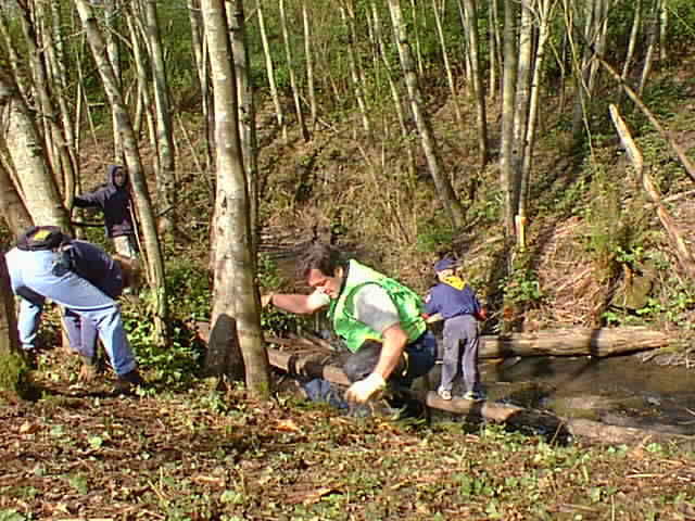 Earth Day 2001 Springbrook Creek Clean-up Event