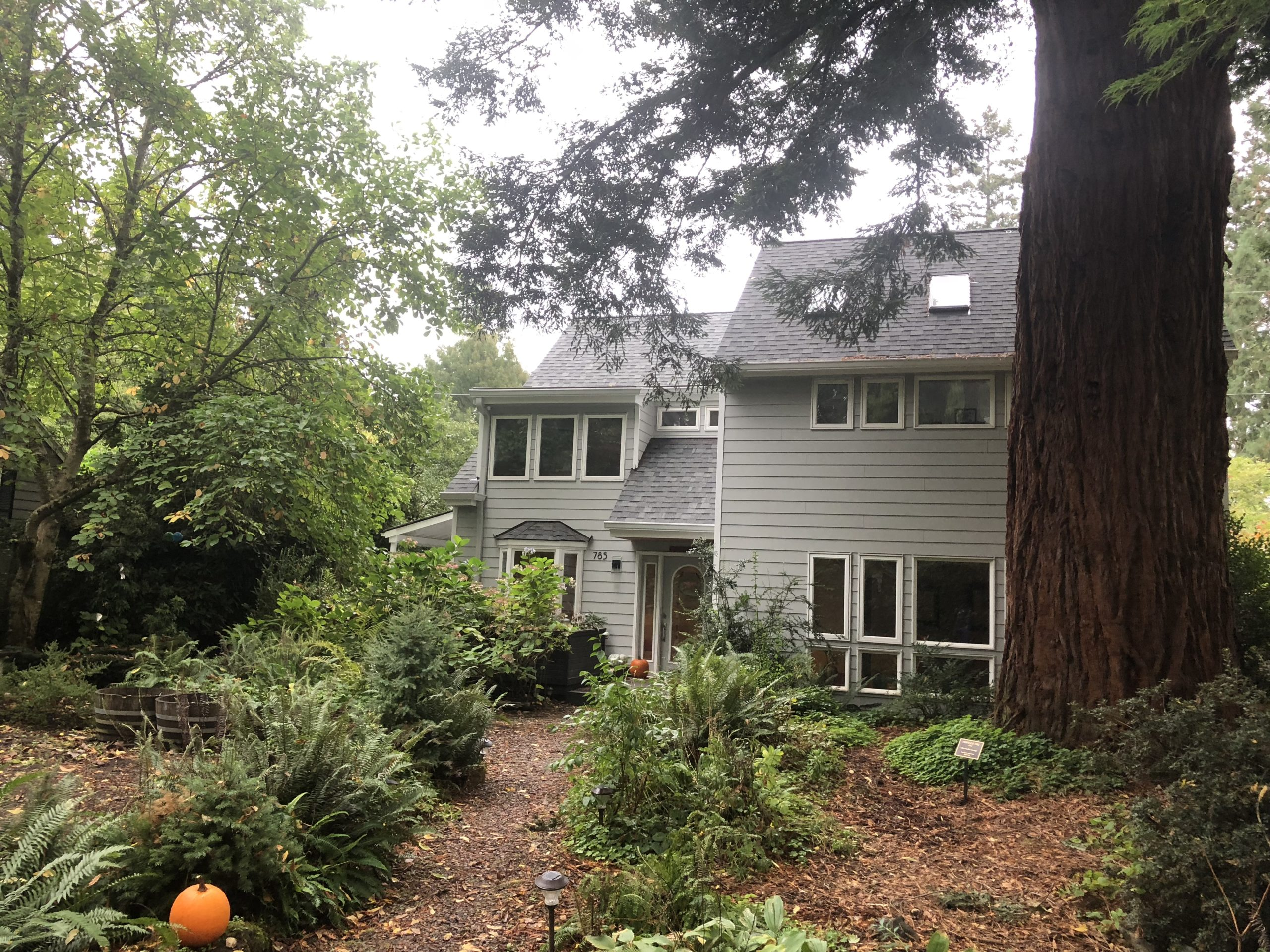 """A Lake Oswego home in our """"urban forest"""""""
