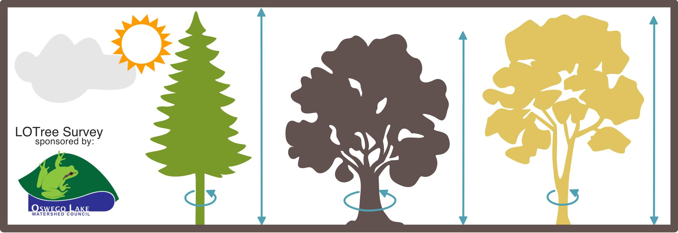 iTree Tree Inventory Community Science Program
