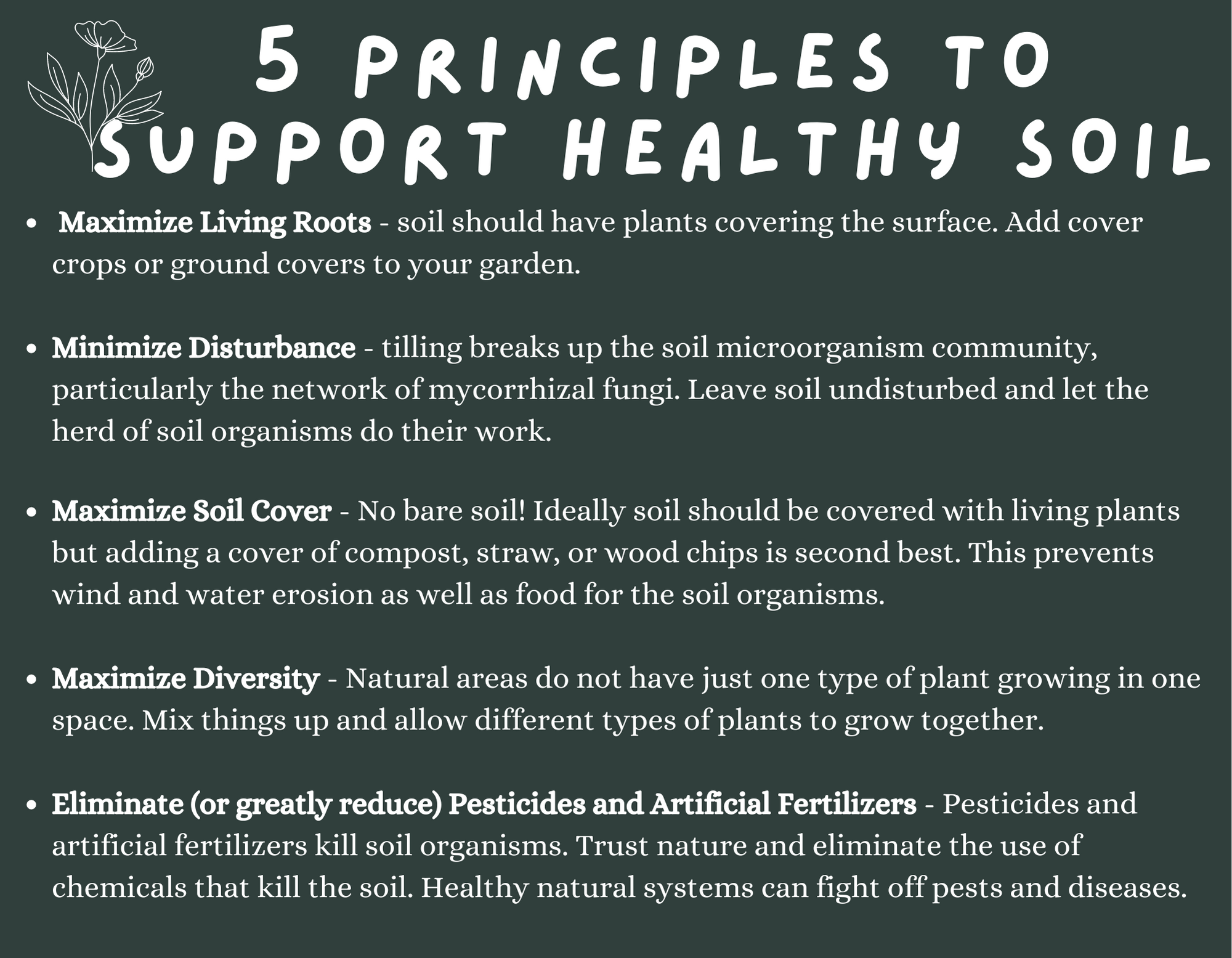 5 principles to support healthy soil
