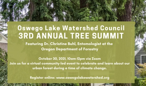 CLICK to register for the 3rd Annual Tree Summit